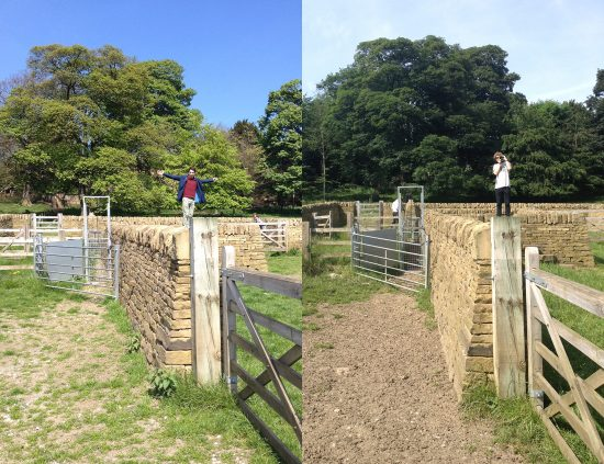 Two photos of friends at YSP
