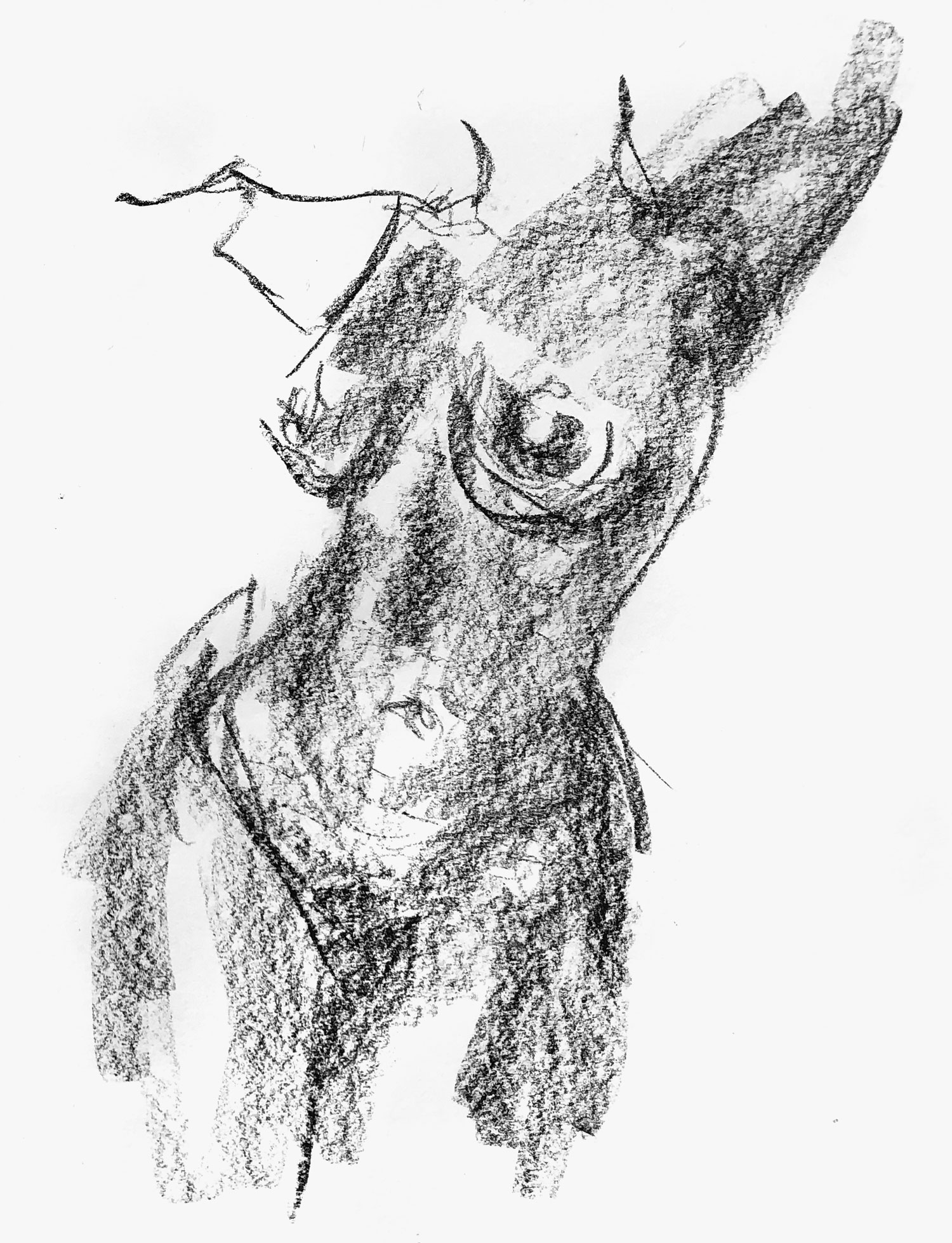 2 minute life drawing