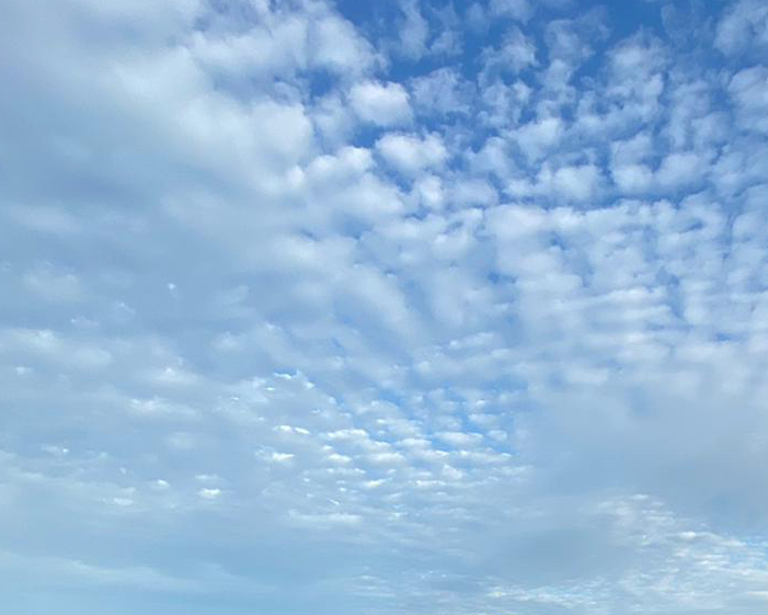 Altocumulus clouds against a blue sky