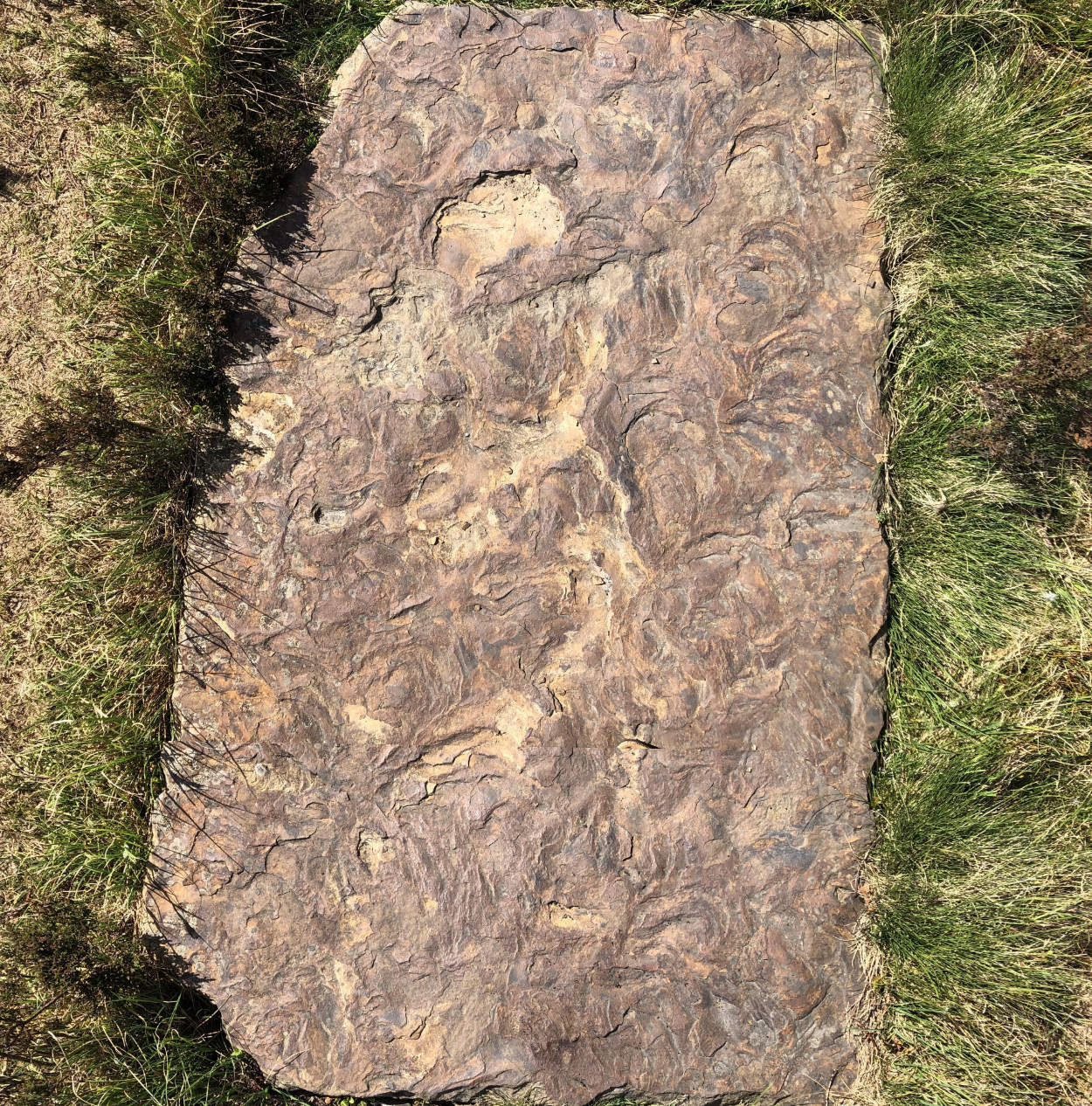Birds-eye view of a sun-drenched flagstone on Ilkley Moor
