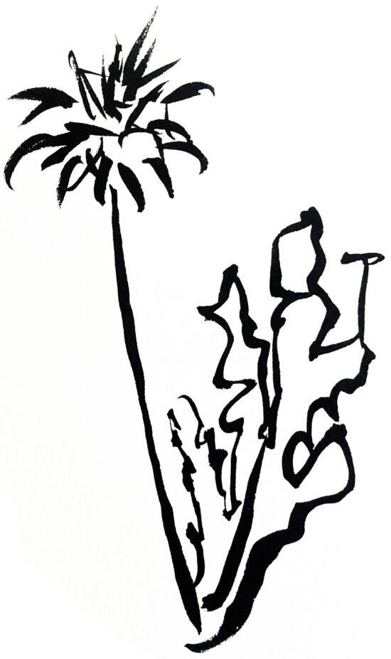 Black ink sketch of a dandilion