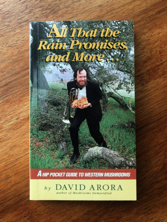 "Cover of the book ""All That the Rain Promises and More..."""